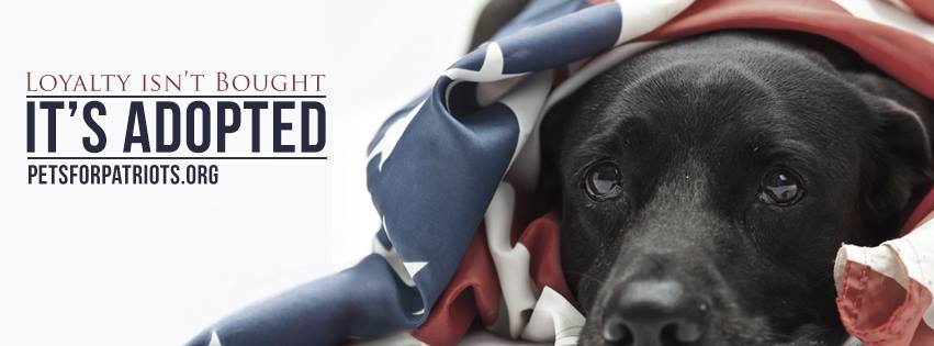 pets for patriots 1